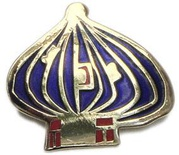"Pin ""Onion Dome"""